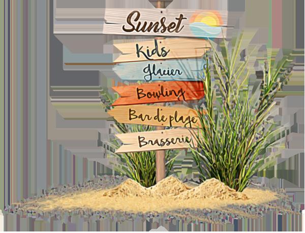 Les différentes activités du Sunset